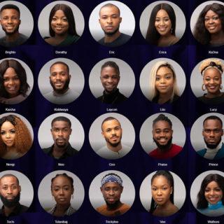 Big Brother Naija 2020 housemates names