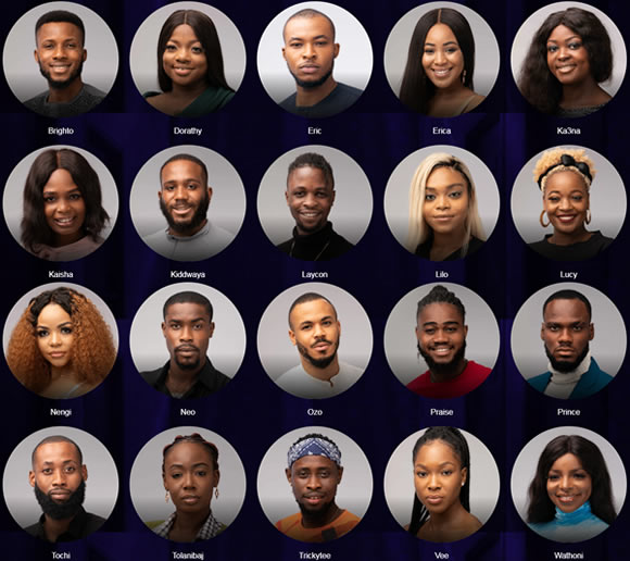 Meet the Big Brother Naija 2020 housemates - South African ...